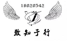 中北大学542班V字主题翅膀图案班旗设计